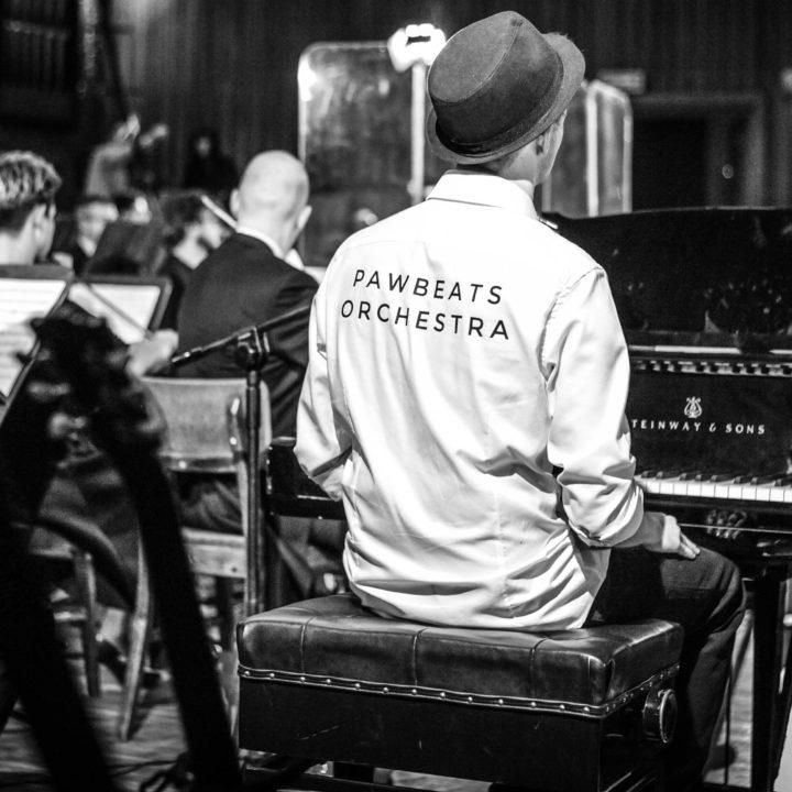 Pawbeats Orchestra + Goście